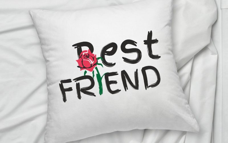 Best-Friend-pillow-Friend-gift-pillow-cushion-cover-Boho-pillow-Friend-Pillowcase-Friend-Cushion-Cover-Home-Decor-Best-Friend-gift